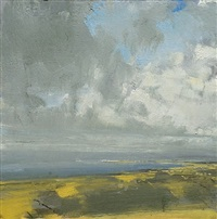 carrowmore fields by eric aho