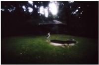 marabu #8 by noguchi rika