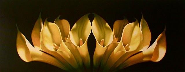 golden symmetry by leon belsky