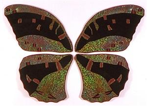 butterfly #2 by milena dopitova