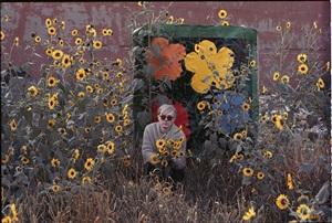 warhol flowers xiii by william john kennedy