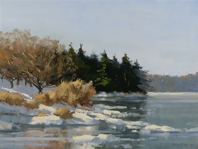 estuary in winter sun by carolyn walton