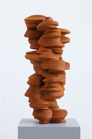 different points of view by tony cragg