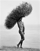 nude with tumbleweed, paradise cove by herb ritts