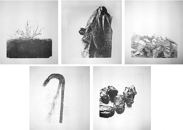 au loin un oiseau, portfolio by avigdor arikha