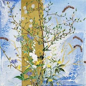 hawkweed by robert kushner
