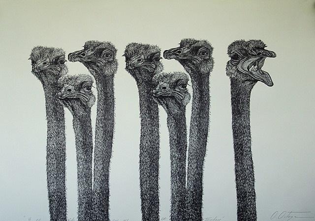 untitled, de la serie caribe merecido by osmeivy ortega