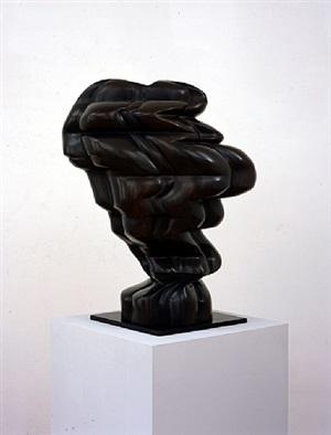 woman's head by tony cragg