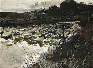 lilly pads by andrew wyeth