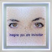 imagine you are invincible by norbert brunner