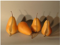 untitled - 4 pears by stephanie chubbuck