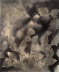 unique photogram of leaves by ray k. metzker