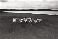 irish boys ii, connemara, ireland for yamamoto by ferdinando scianna