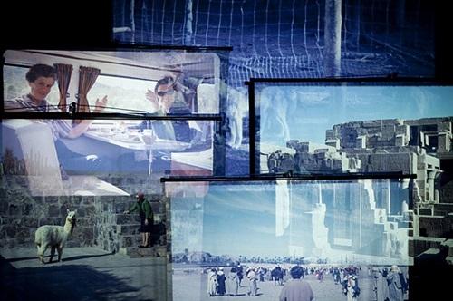 search for landscapes by vesna pavlovic