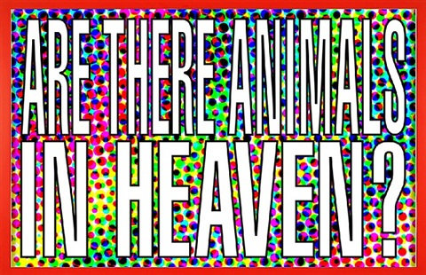 untitled (are there animals in heaven?) by barbara kruger