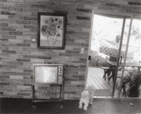 nixon and puppy by bill owens