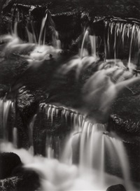 fern spring, dusk, yosemite valley, california (and ansel adams images: 1923-1974 book) by ansel adams