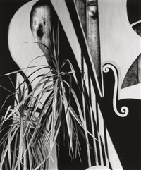 untitled (plants and shapes) by brett weston