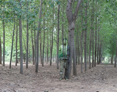 hiding in the city no 94 in the woods by liu bolin