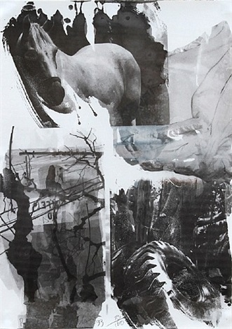 horse silk from the night sights series by robert rauschenberg