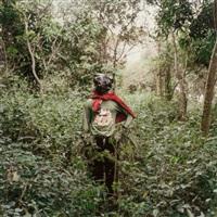 kwadwo konado, wild honey collector, techiman district, 2005 by pieter hugo