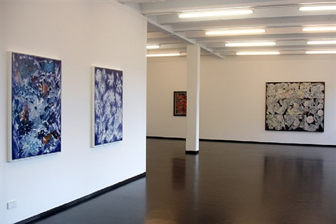 installation view by ross bleckner
