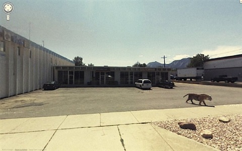 3081 valmont road, boulder, colorado, united states by jon rafman