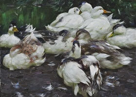 ducks by alexander max koester