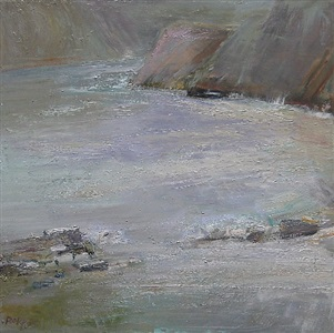 the cove (sold) by ira barkoff