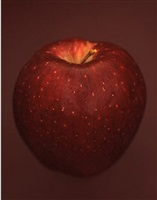 malus x domestica 'red delicious' by ron van dongen