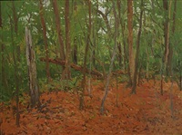 red and green turner woods by eugene leake