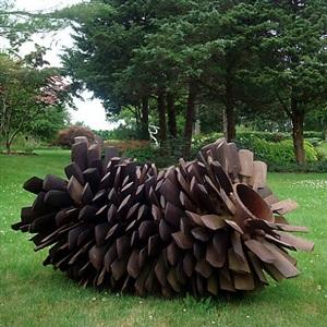 pine cone by steve tobin