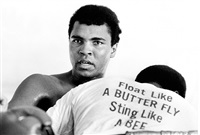 float like a butterfly by chris smith