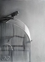 bird on cage by gale antokal