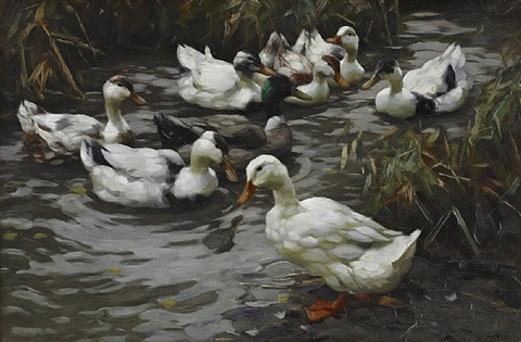 the duck pond by alexander max koester