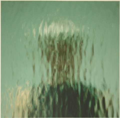 reflection 1255 by ann hamilton