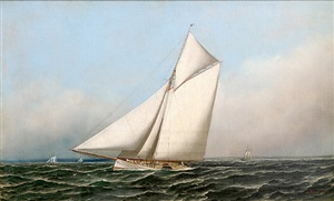 racing cutter mayflower of 1886 by antonio jacobsen