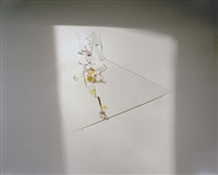 untitled #13 (from the series: ill form and void full) by laura letinsky