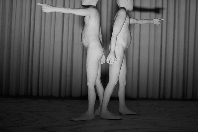 twins by nic nicosia