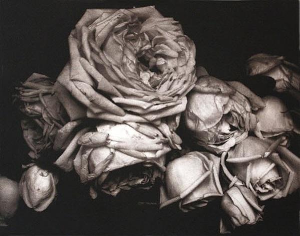 untitled by edward steichen