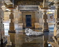 bakhti , the path of sants, shiva temple, hampi by karen knorr