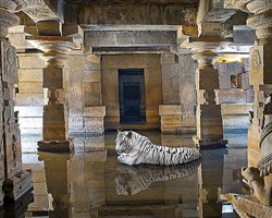 bakhti , the path of sants, shiva temple, hampi by karen knorr