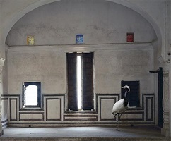 light of the world, zanana room, nawalgarh by karen knorr