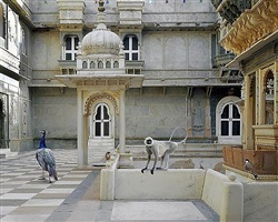 the courtyard conference, dungarpur palace by karen knorr