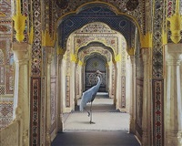 the holding of vigilance, samode palace by karen knorr