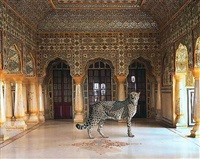 the return of the hunter, jaipur palace, jaipur by karen knorr