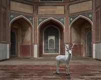 the witness, humayun's tomb, new delhi by karen knorr