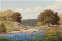 bluebonnets in spring by palmer chrisman