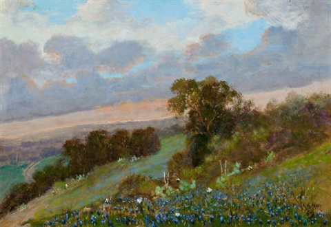 bluebonnet hillside by carl hoppe