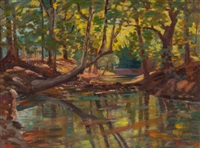 fain's creek, arkansas by olin herman travis